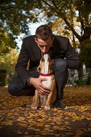 dog-921381_640